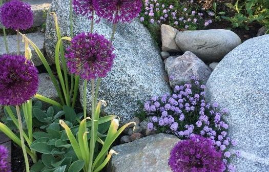 stone-flowers